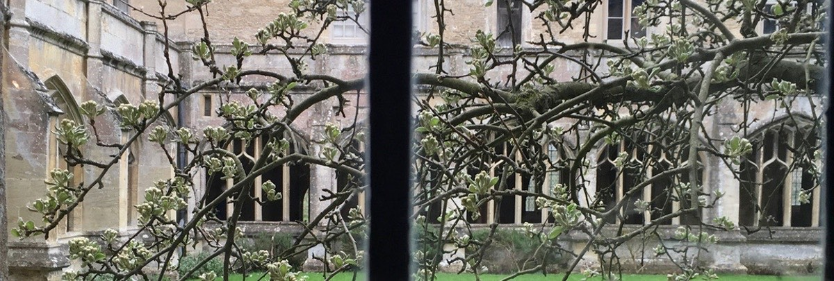 cloister_peartree